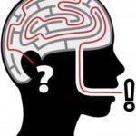 Survival Brain!